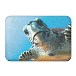 ABE Magazine Sea Turtles Non Slip Doormat Floor Mat Carpet I
